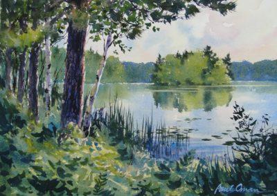 Island Lake Summer