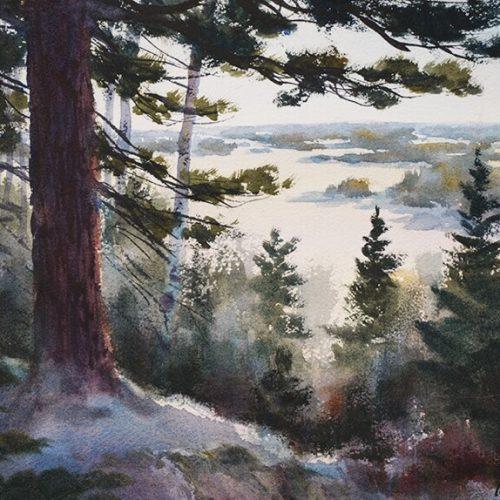 Evergreen Overlook
